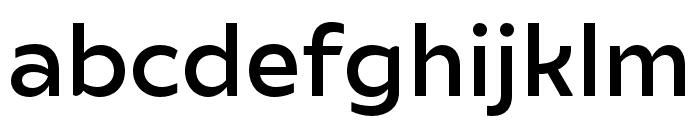 Ariana Pro Medium Font LOWERCASE