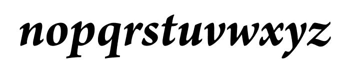 Arno Pro Bold Italic Display Font LOWERCASE