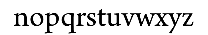 Arno Pro Display Font LOWERCASE