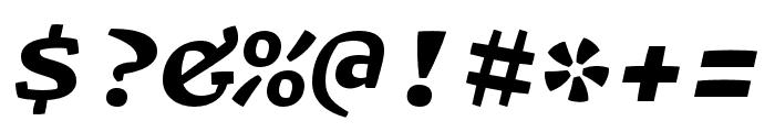 Array Mono Black Italic Font OTHER CHARS