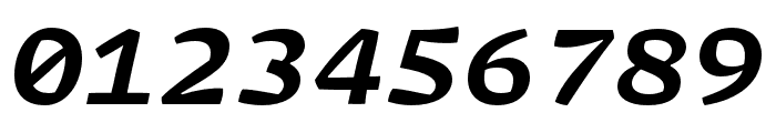 Array Mono Bold Italic Font OTHER CHARS
