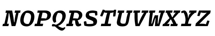 Array Mono Bold Italic Font UPPERCASE