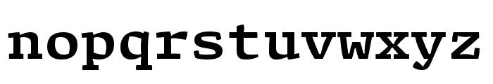 Array Mono Bold Font LOWERCASE