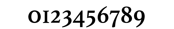 Athelas Arabic Regular Font OTHER CHARS