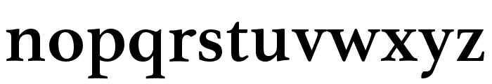 Athelas Arabic SemiBold Font LOWERCASE