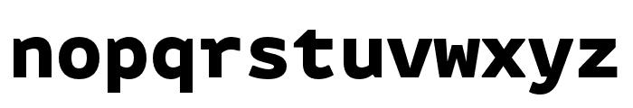 Attribute Mono Black Font LOWERCASE