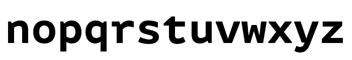 Attribute Mono Bold Font LOWERCASE
