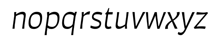 Auster Book Italic Font LOWERCASE