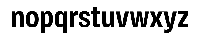 Ballinger Condensed Bold Font LOWERCASE