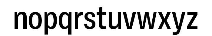 Ballinger Condensed Medium Font LOWERCASE