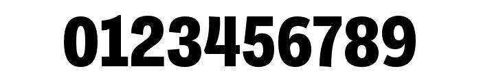 Ballinger Condensed X Bold Font OTHER CHARS