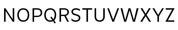 Basic Gothic Pro Regular Font UPPERCASE