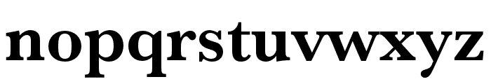 Baskerville URW Extra Narrow Bold Font LOWERCASE