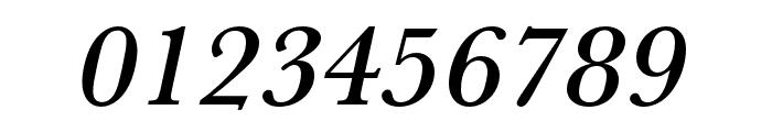 Baskerville URW Extra Wide Medium Oblique Font OTHER CHARS