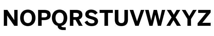 Benton Sans Bold Font UPPERCASE