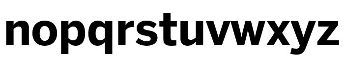 Benton Sans Bold Font LOWERCASE