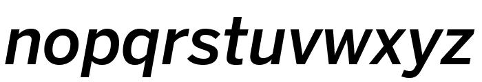 Benton Sans Compressed Medium Italic Font LOWERCASE