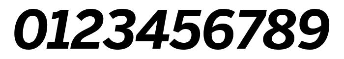 Benton Sans Condensed Bold Italic Font OTHER CHARS