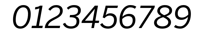 Benton Sans Condensed Italic Font OTHER CHARS