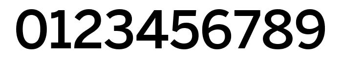 Benton Sans Extra Compressed Medium Font OTHER CHARS