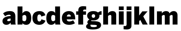 Benton Sans Wide Black Font LOWERCASE
