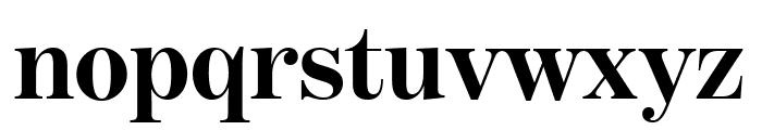 BentonModDisp Bold Font LOWERCASE