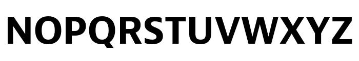 Bernina Sans Condensed Bold Font UPPERCASE