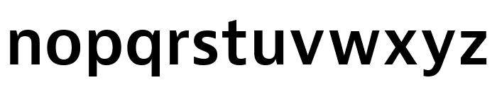 Bernina Sans Condensed Semibold Font LOWERCASE