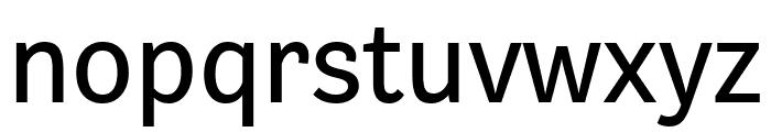Bligh Regular Font LOWERCASE