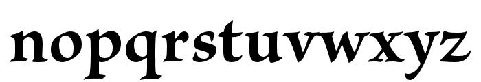 Brioso Pro Bold Display Font LOWERCASE
