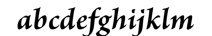 Brioso Pro Bold Italic Caption Font LOWERCASE
