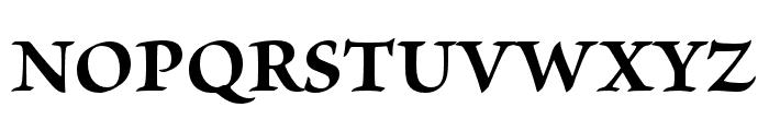Brioso Pro Bold Font UPPERCASE