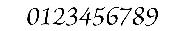 Brioso Pro Italic Subhead Font OTHER CHARS
