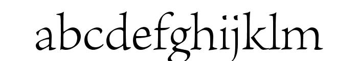 Brioso Pro Light Display Font LOWERCASE