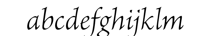 Brioso Pro Light Italic Display Font LOWERCASE