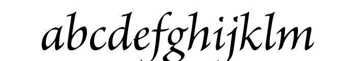Brioso Pro Light Poster Italic Font LOWERCASE
