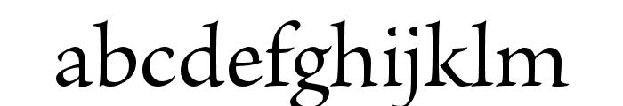 Brioso Pro Light Poster Font LOWERCASE