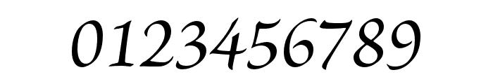 Brioso Pro Medium Italic Subhead Font OTHER CHARS