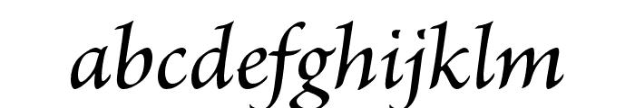 Brioso Pro Medium Italic Subhead Font LOWERCASE