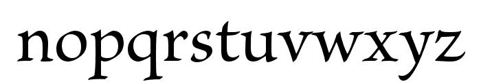 Brioso Pro Medium Subhead Font LOWERCASE