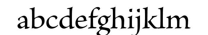 Brioso Pro Medium Font LOWERCASE