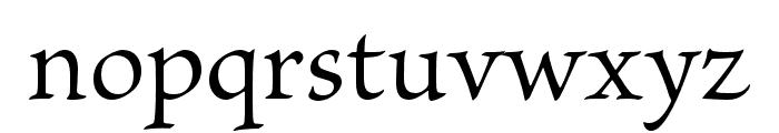 Brioso Pro Regular Font LOWERCASE