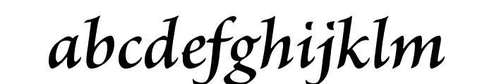 Brioso Pro Semibold Italic Subhead Font LOWERCASE