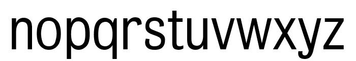 Bureau Grot Compressed Light Font LOWERCASE