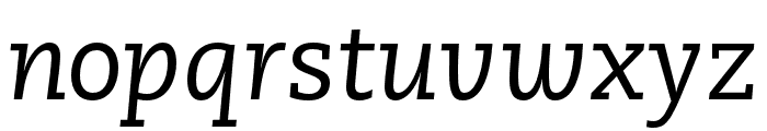 Caecilia LT Pro 56 Italic Font LOWERCASE