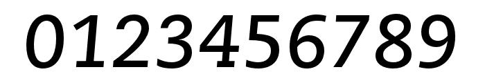 Caecilia LT Pro 76 Bold Italic Font OTHER CHARS