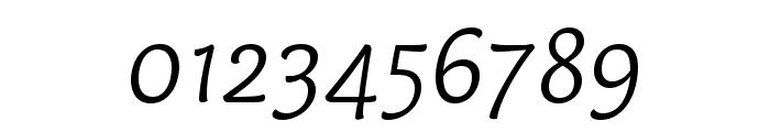 Capucine Basic Light Italic Font OTHER CHARS