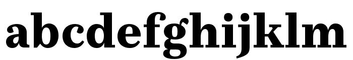 Casus Pro Black Font LOWERCASE