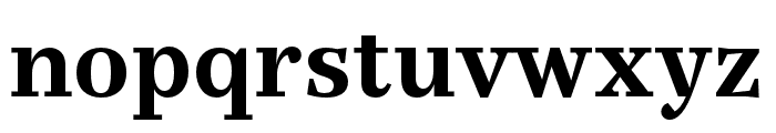 Casus Pro Bold Font LOWERCASE
