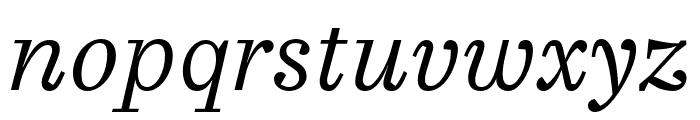 Casus Pro Light Italic Font LOWERCASE